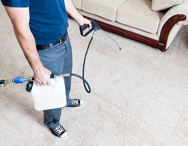 Factors to Consider When You Are Looking for the Best Home Cleaner in London